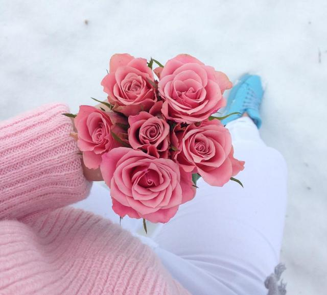 spring in winter ❤ i love roses :)