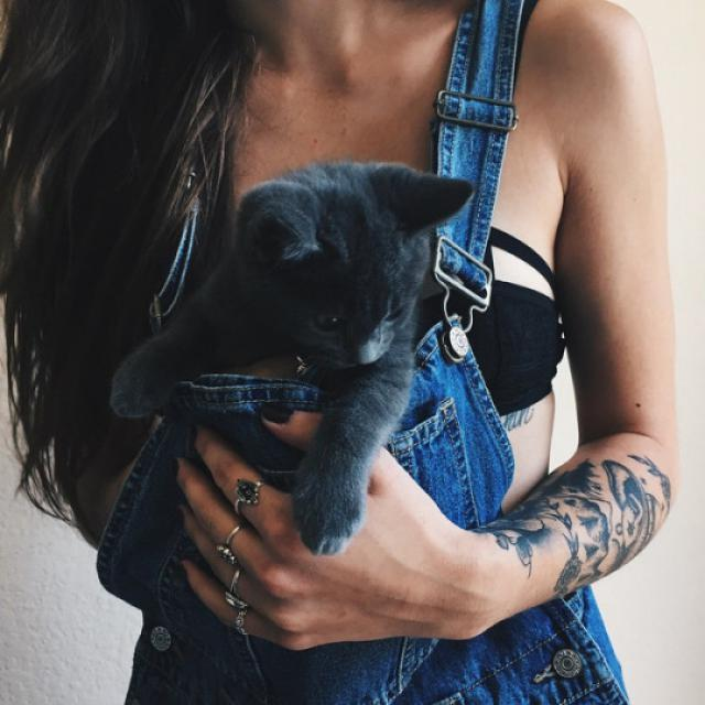 Denim overall and purrfect kitty!